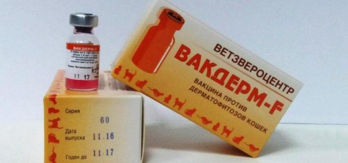 Коробка и флакон вакцины Вакдерм F