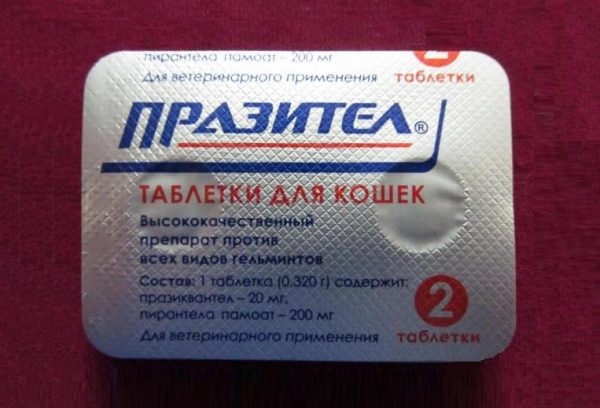 Обратная сторона блистера с таблетками празител