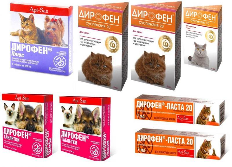 Инструкция по применению Дирофена для кошек