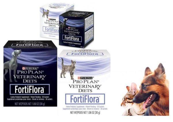 Фортифлора для кошек и собак