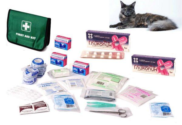Аптечка, медикаменты и кошка