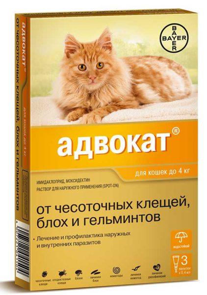Капли Адвокат для котов