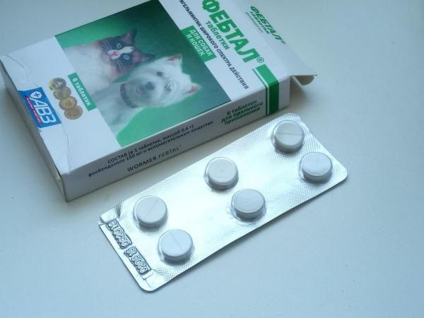 Коробка и блистер таблеток Фебтал