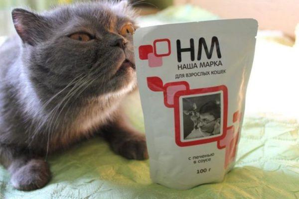 Кот и влажный корм «Наша Марка»