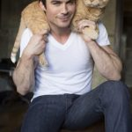 Сомерхолдер с котом