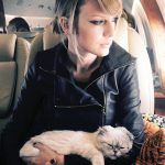 Свифт с кошкой