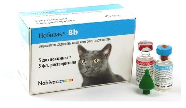 Нобивак Bb