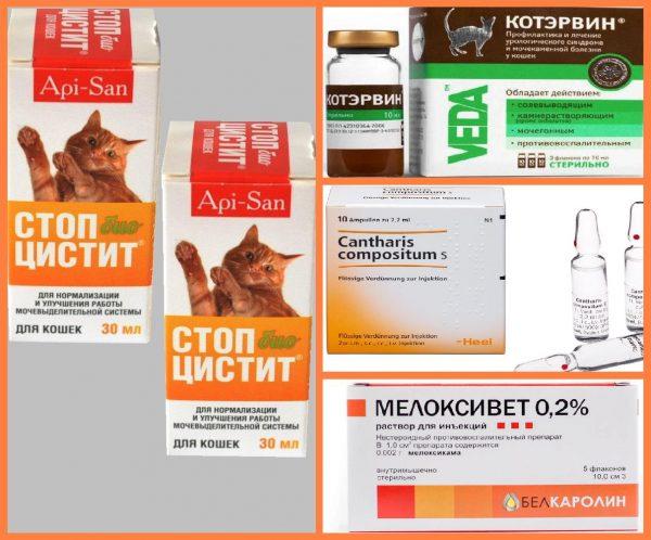 Стоп-цистит и другие препараты