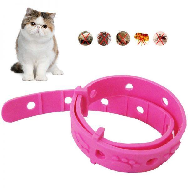 Антиблошиный ошейник для кошки