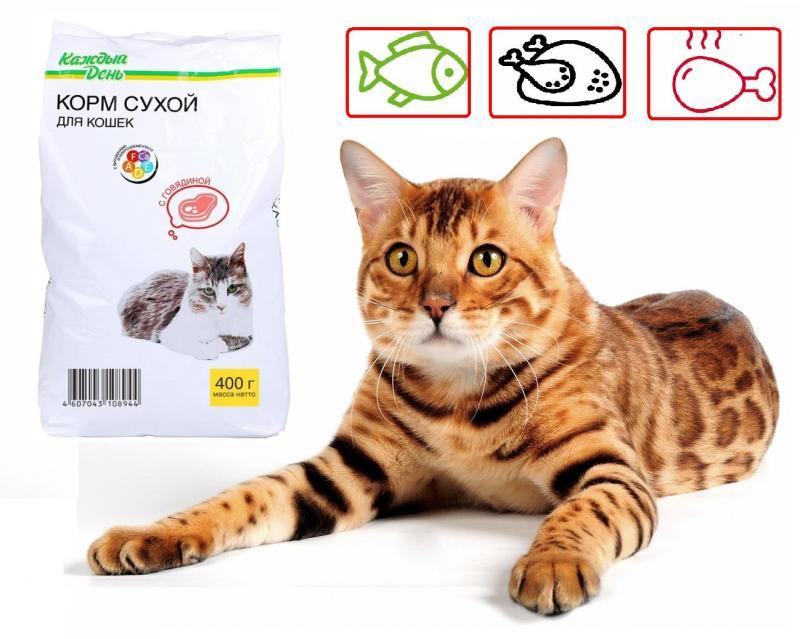 Обзор корма для кошек«Каждый день»