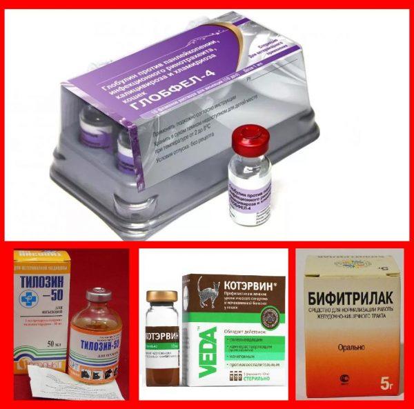Глобфел-4 и другие препараты