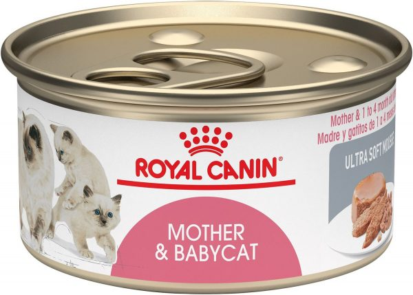 Royal Canin Mother {amp}amp; Babycat