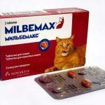 Упаковка таблеток Мильбемакс для крупных кошек