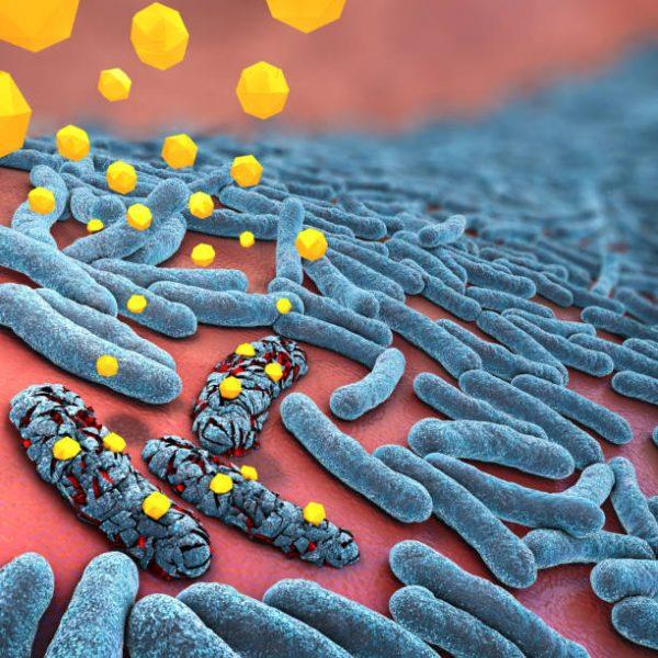 Антибиотик и бактерия