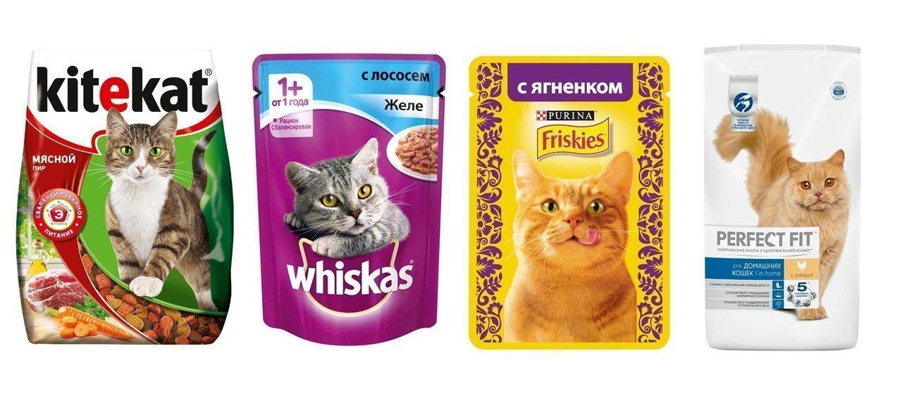 корм для котят эконом класса