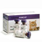 Нобивак Forcat