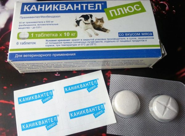 Таблетки Каниквантел для кошек