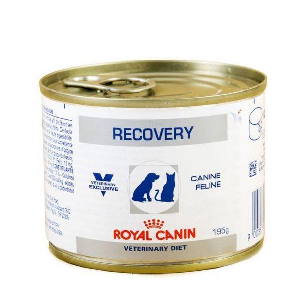 Влажный корм Royal Canin Recovery