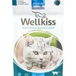 Сухой корм Wellkiss для стерилизованных кошек