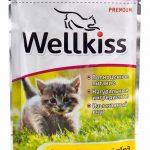 Консервы Wellkiss для котят