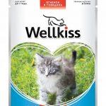 Консервы Wellkiss для котят с ягнёнком и говядиной