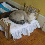 Кровать для кошки с коваными оголовьями
