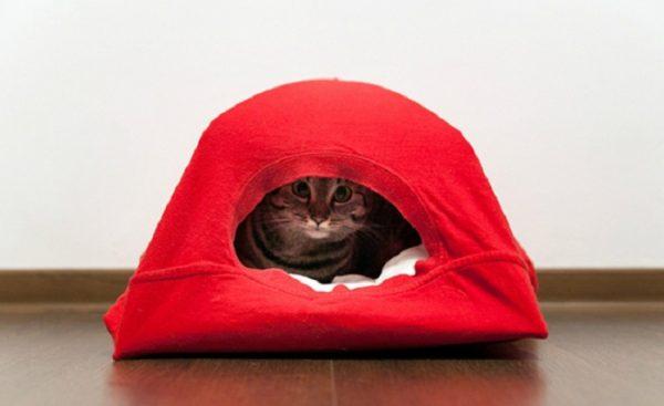 Палатка для кошки из ненужной футболки