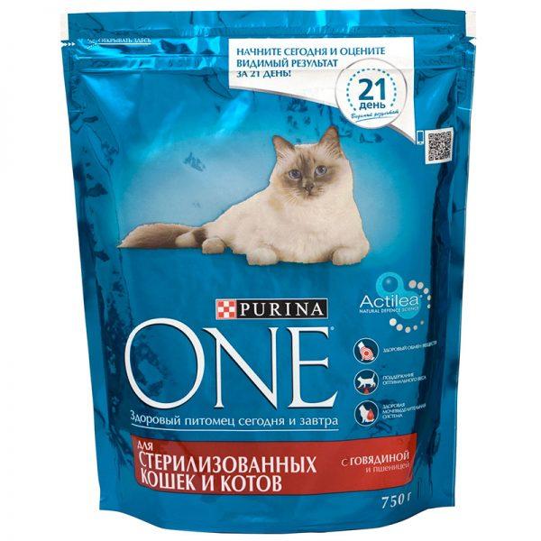Вреден ли корм кошкам thumbnail