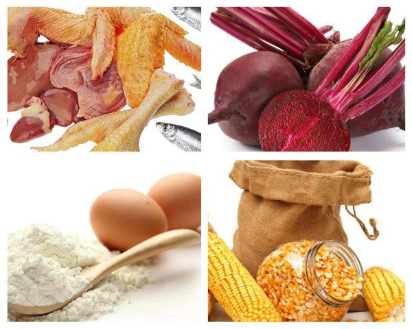 Продукты животного и растительного происхождения