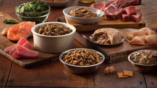 Свежее мясо разных видов и образцы кормов для животных