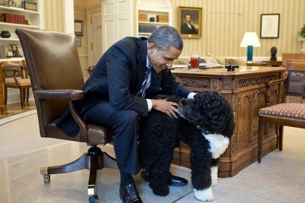 Обама с вассерхундом