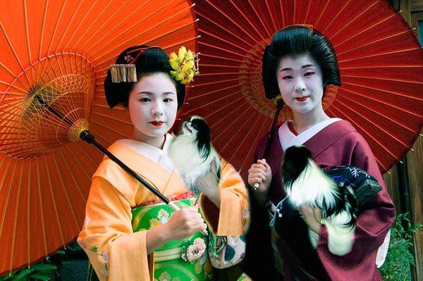 Японки и хины