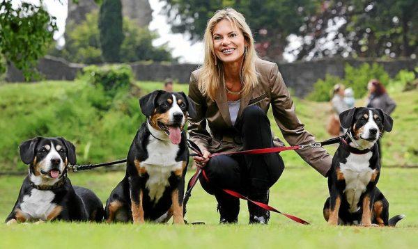 Собаки породы энтлебухер зенненхунд с хозяйкой