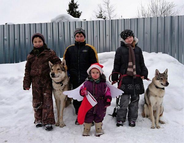 Дети с волчаками
