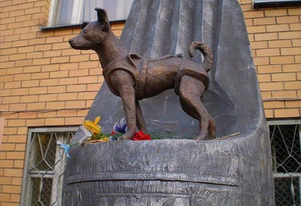 Памятник Лайке-космонавту