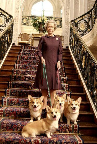 Королева Елизавета с собаками