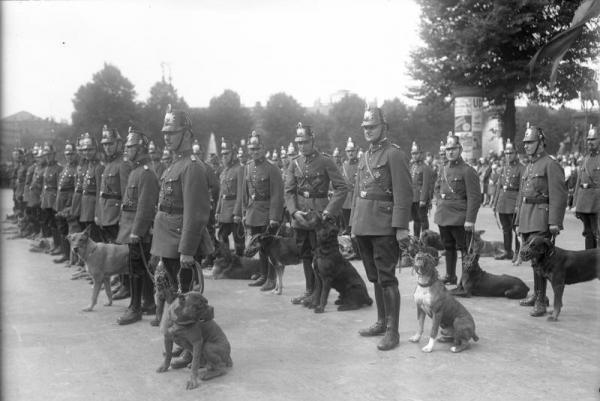 Немецкая армия и служебные собаки