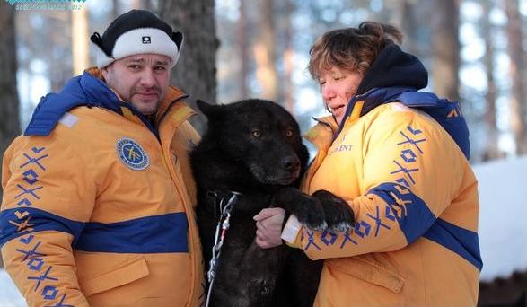 Русский вольфхунд с хозяевами