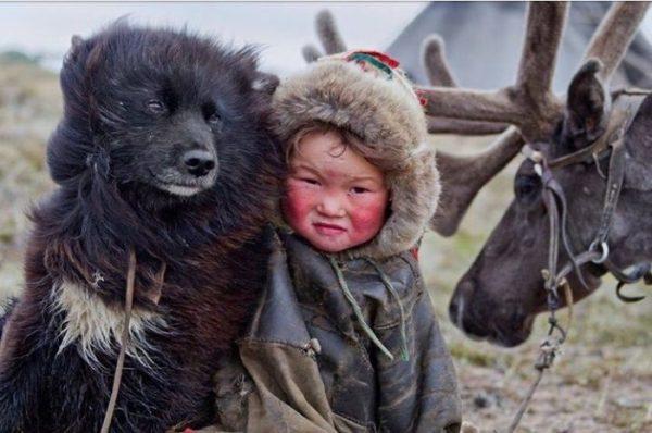 Ненецкая лайка и ребёнок