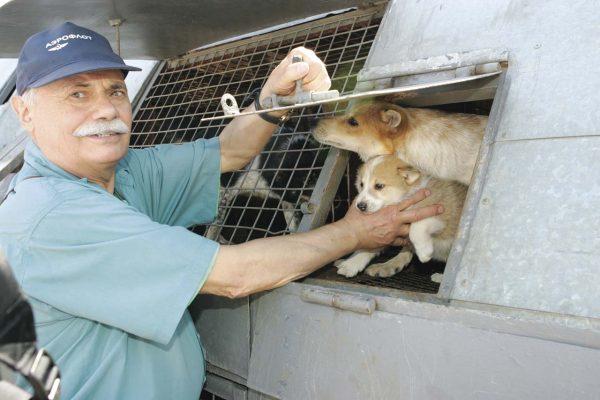 Клим Сулимов с собаками