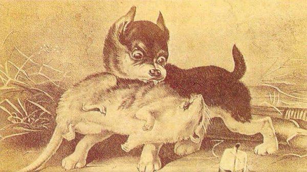 Гравюра с собакой и крысой