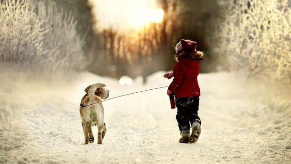 Девочка с собакой на поводке