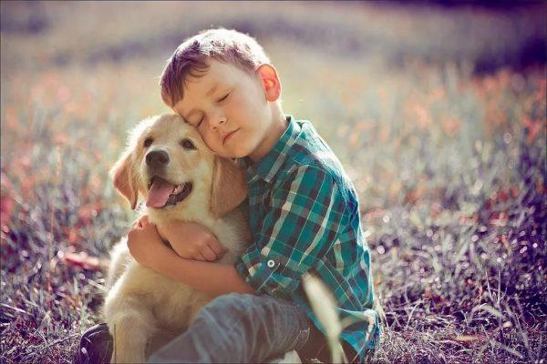Мальчик с щенком ретривера