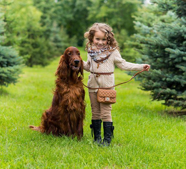 Сеттер и девочка в парке